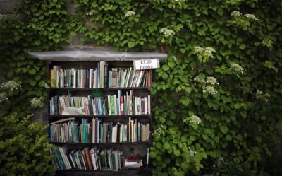Photo by www.gopixpic.com