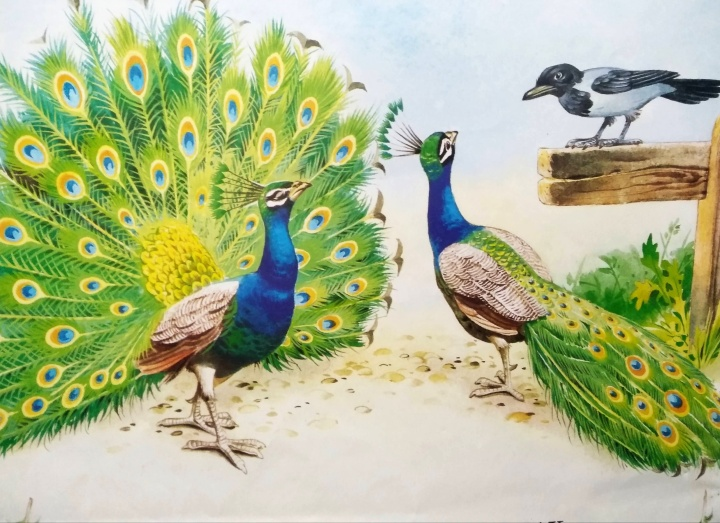 Gagak Yang Banyak Lagak (The Bird With Borrowed Feathers by Aesop). Photo credit: Tony Wolf